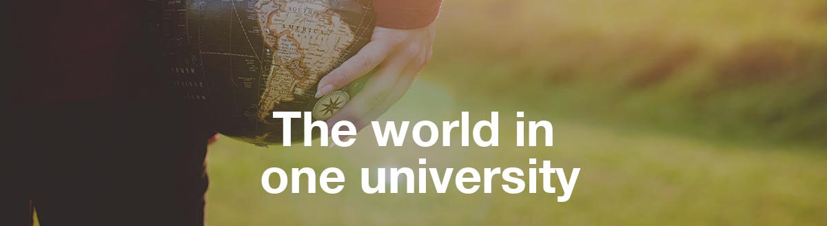 The world in one university